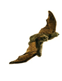 Мягкая игрушка на руку Летучая мышь, 46см от Folkmanis