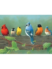 Набор для раскрашивания красками. Птицы REEVES/Ривс